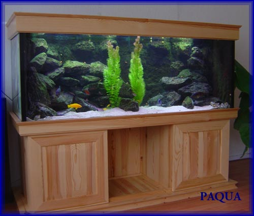 Paqua Aquaria